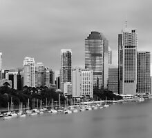 Brisbane CBD Taken from Kangaroo Point by Ann Pinnock