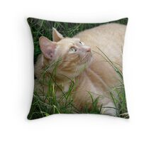 Those Big Green Eyes Throw Pillow