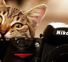 Cat Photographer Sticker