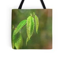 Baby Chestnut Leaves on a Painted Background Tote Bag