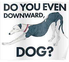Do you even downward, dog? Poster