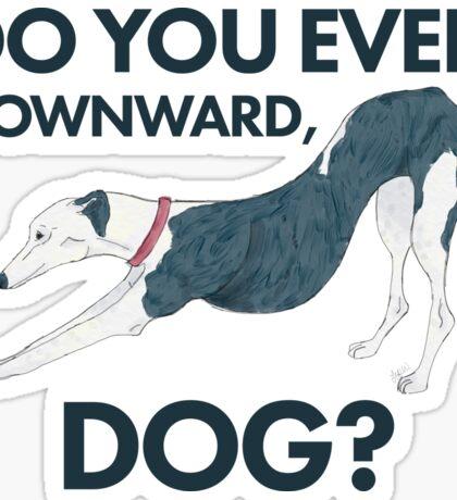 Do you even downward, dog? Sticker