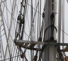 Ship's Rigging Sticker