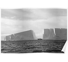Antartica - Icebergs! Poster