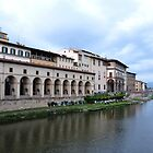 Banks of River Arno by Karen E Camilleri