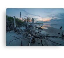Stumps at Sunset - St. George Island Canvas Print