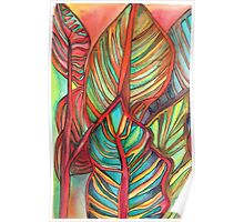 Canna leaves tropical art Poster