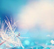 Wishful by alyphoto