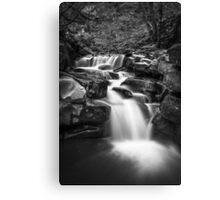 Monochrome waterfall Canvas Print