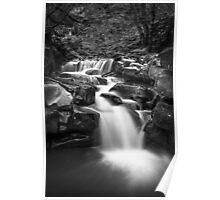 Monochrome waterfall Poster
