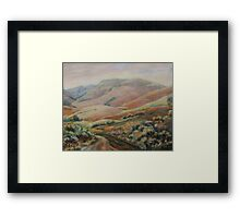 Flowering hops in Flinders Ranges Framed Print