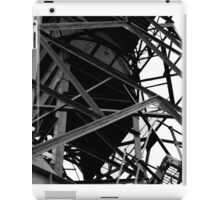 Deserted Crane  iPad Case/Skin