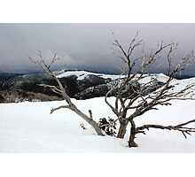 A snowstorm on a mountainside in Australia Photographic Print
