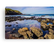 Rockpool at the Flinders Blowhole, Mornington Peninsula Canvas Print