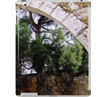 Ruin & Tree iPad Case/Skin
