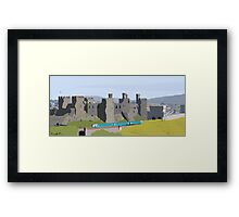 Conwy in Full Bloom Framed Print