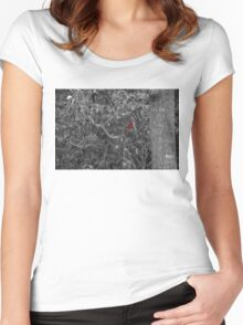 Cardinal in a Tree Women's Fitted Scoop T-Shirt
