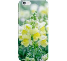 Snapdragons iPhone Case/Skin