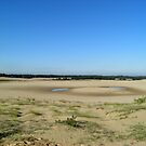 The Loonse and Drunense Dunes by angeljootje
