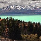 Lake Pukaki by Steven  Sandner
