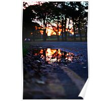 Puddle of Sunrise Poster