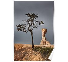 Tree and Queen Victoria, Bryce Canyon National Park, Utah, USA. Poster