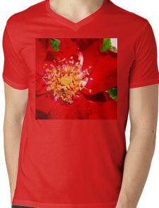 Bitty Bee on Red Flower Mens V-Neck T-Shirt