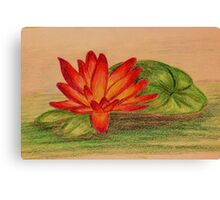 Waterlily - Colored Pencil Drawing Canvas Print