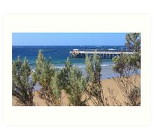 Morning Constitutional... Point Lonsdale, Australia Art Print