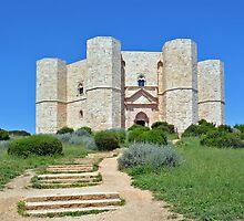 Castle Del Monte - Apulia - Italy by Arie Koene