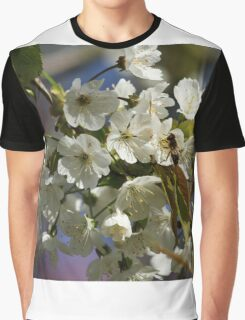 Cherry Blossoms Graphic T-Shirt