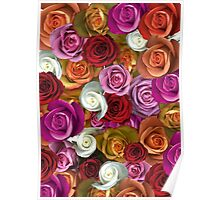 Multi Colored Roses Poster