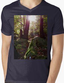 Sun shines through the trees Mens V-Neck T-Shirt