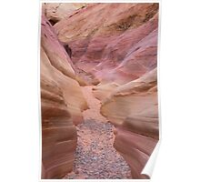Pink Canyon in Valley of Fire Poster