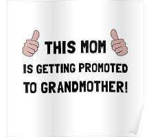Promoted To Grandmother Poster