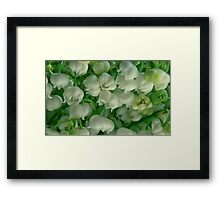 lilies of the valley background Framed Print