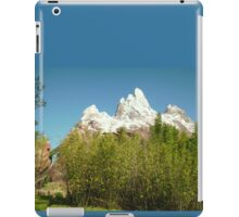 Expedition Everest iPad Case iPad Case/Skin