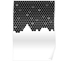 Fish Scale Poster