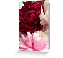 flowers peonies Greeting Card