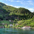 Norwegian Village by Steve