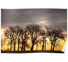 Dancing to the Sunset Poster