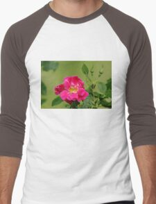 Pink Garden Rose Men's Baseball ¾ T-Shirt