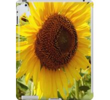 Big Old Sunflower iPad Case/Skin