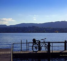 Bicycle at Zurisee by Charmiene Maxwell-batten