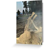 The Life Of The Tree Remains Greeting Card