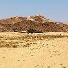 Damaraland oasis by Rudi Venter