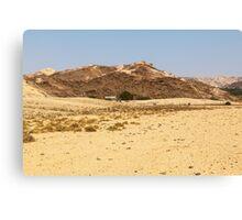 Damaraland oasis Canvas Print