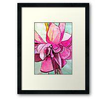 Pink Fuchsia flower Framed Print