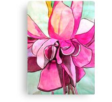 Pink Fuchsia flower Canvas Print