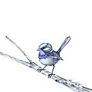 Single Blue Wren Watercolour by Tracey Quick